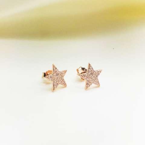 Orecchini lobo argento 925 oro rosa Stella Zirconi
